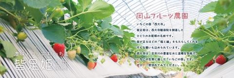 ichigonokuni.jpg