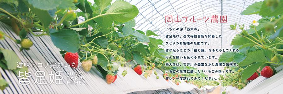 ichigonokuni